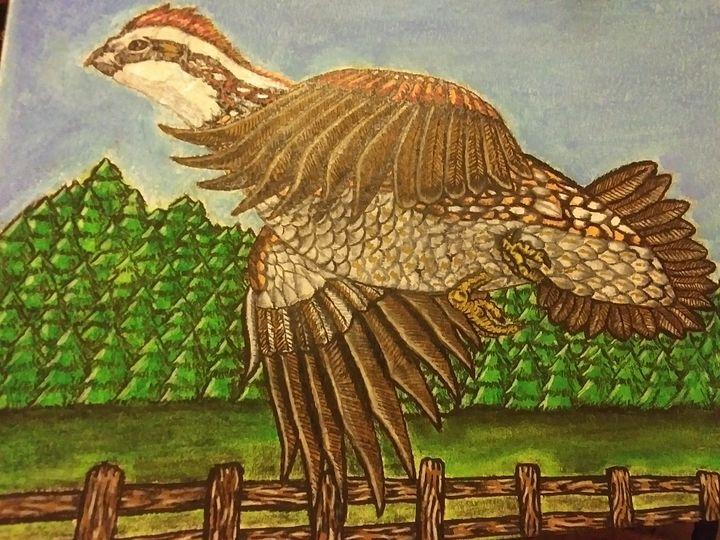 Bobwhite quail - Against the grain art