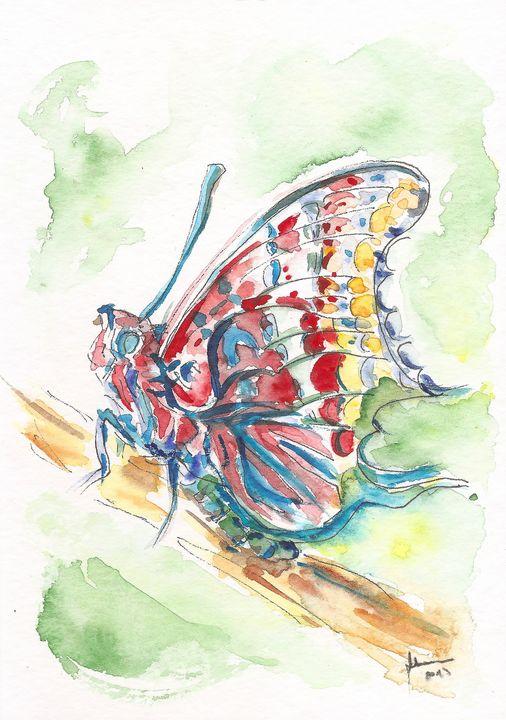 Charaxes jasius - Butterfly - J V G - Art