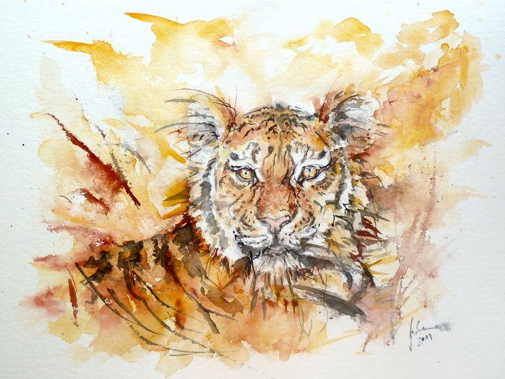 Noble Tiger - J V G - Art