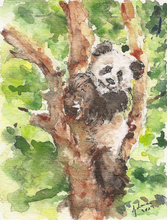 Panda Bear sitting on a tree - J V G - Art