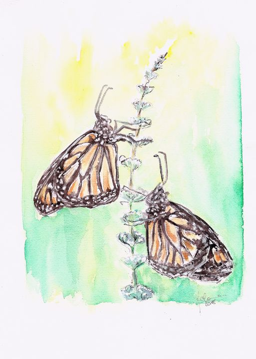 Two butterflies - J V G - Art