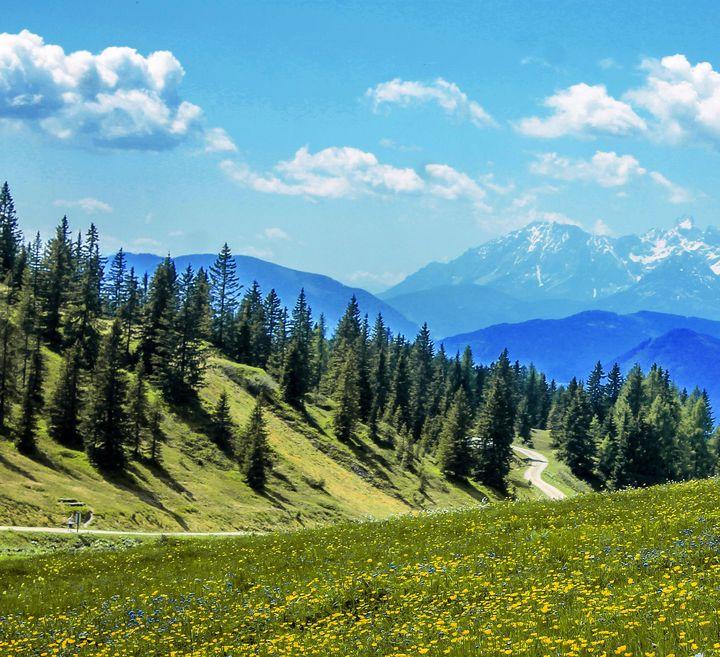 Beautiful green landscape - Creative Photography