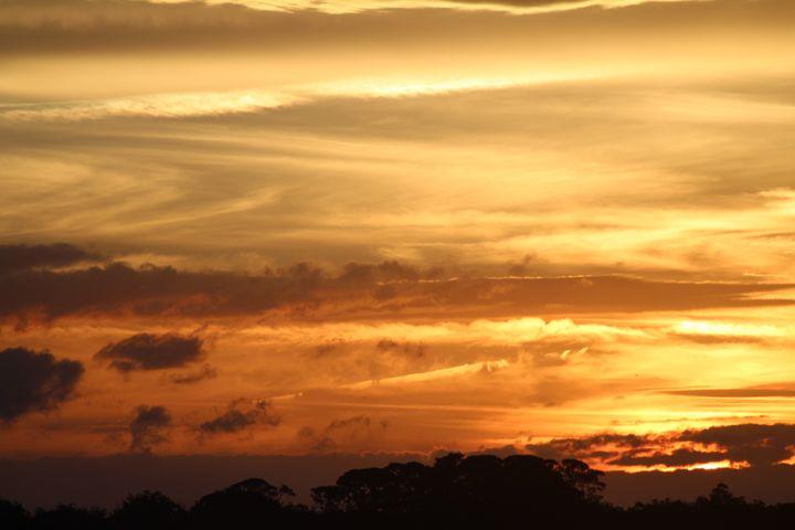 Serene Evening - EveryMoment Photography