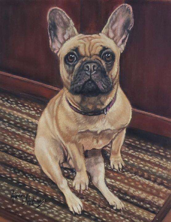 Pastel pet portrait - PetPortraits & Fine Art by Audrey Altemose
