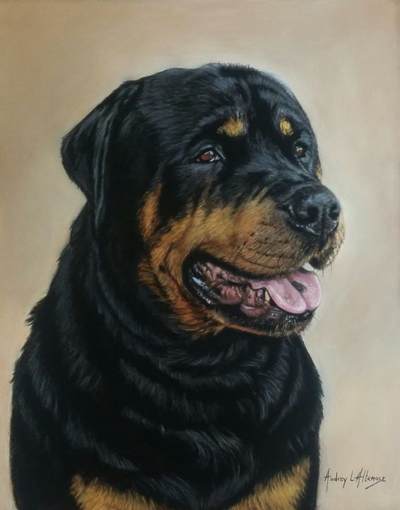 Pastel Pet Portrait of Jr - PetPortraits & Fine Art by Audrey Altemose