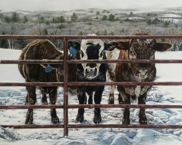 3 Below - PetPortraits & Fine Art by Audrey Altemose