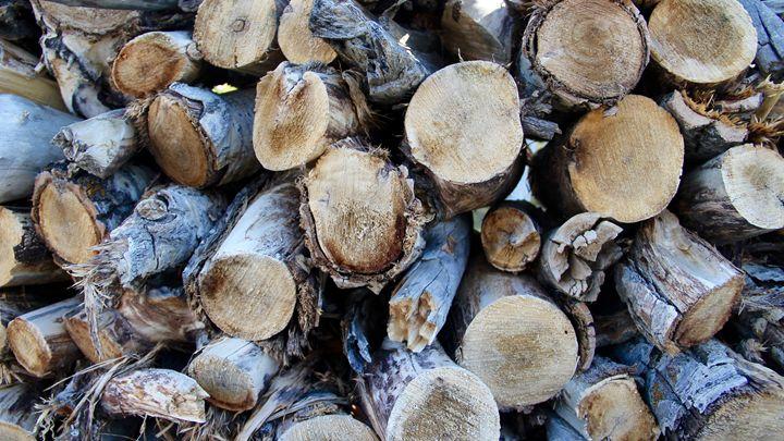 Logs - Cole T