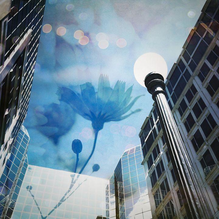 Summer in the City - Andrea Dixon
