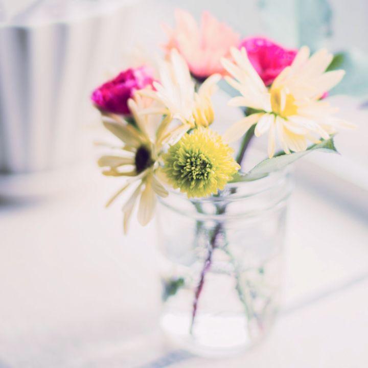 Spring - Andrea Dixon