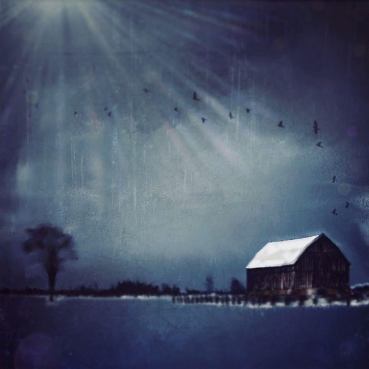 Winter Birds - Andrea Dixon