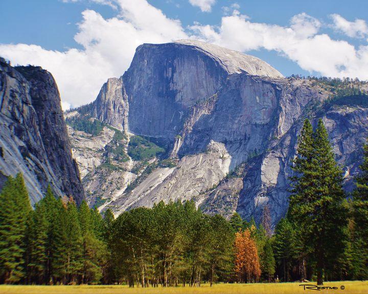 Yosemite National Park - Terry Restivo