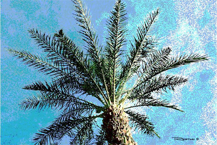 Paradise Palm - Terry Restivo