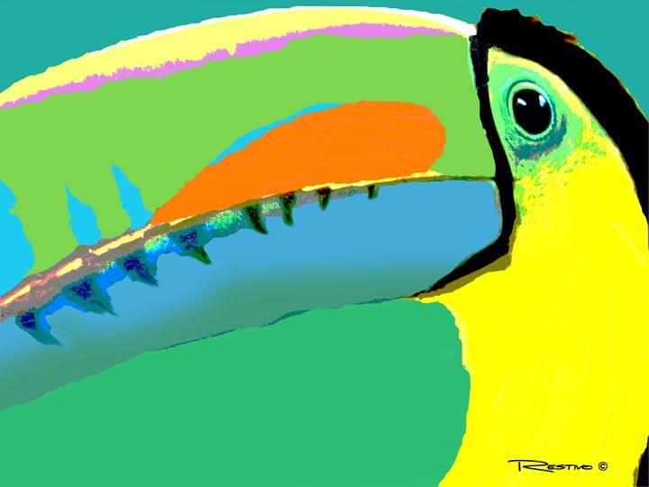 Toucan - Terry Restivo