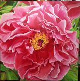 Peony, brightly colored