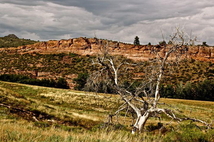 Colorado Rocks - Pure Images by Bre