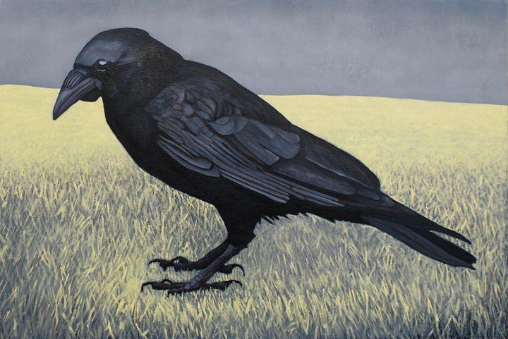 Raven - JOHANNES