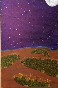 Starlight Prairie