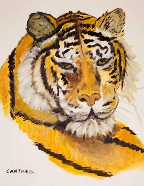 Mother's Tiger - Allen's Artwork