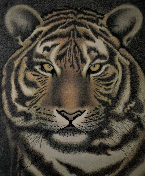 Brother's Tiger - Allen's Artwork