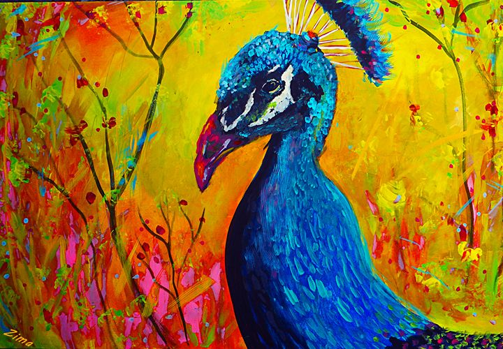 Once Upon A Peacock - Zima