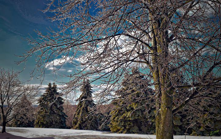 View From My Window - Zima