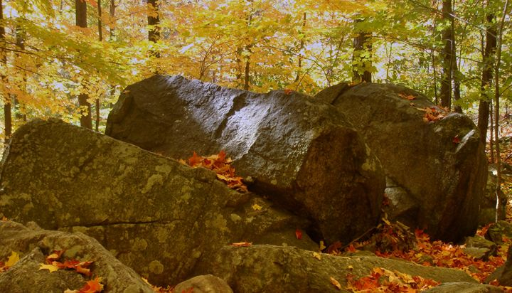 Earth Strength - Earthworks Art Designs and Photography