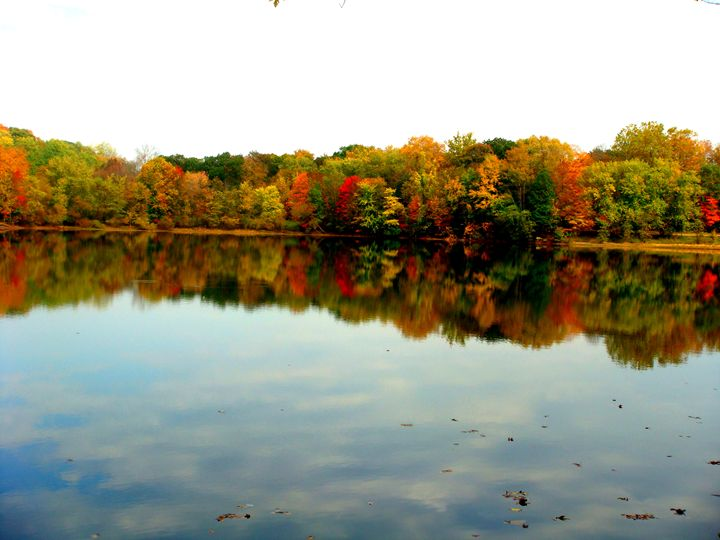 Reflections - Earthworks Art Designs and Photography