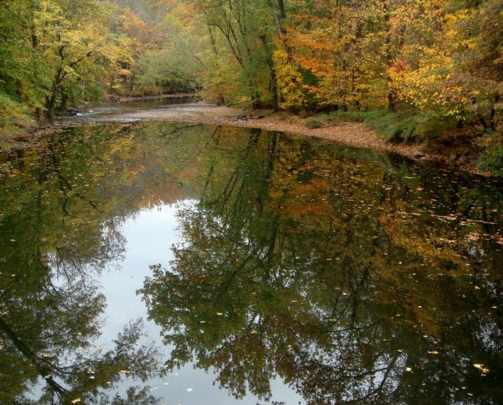 Quiet Creek - Earthworks Art Designs and Photography