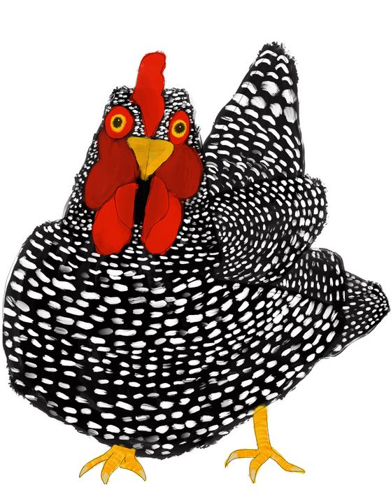 Chicken - Tippoppy
