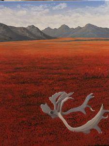 Vestiges, Kobuk Valley, Alaska