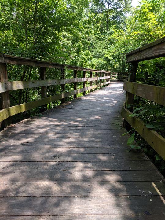 The path - Karen Smith