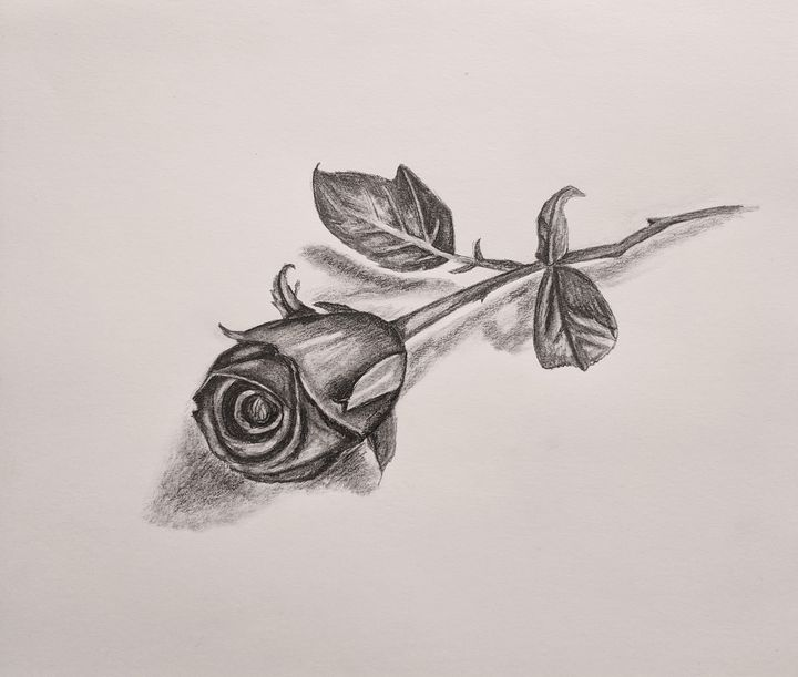 Rose - Karen Smith