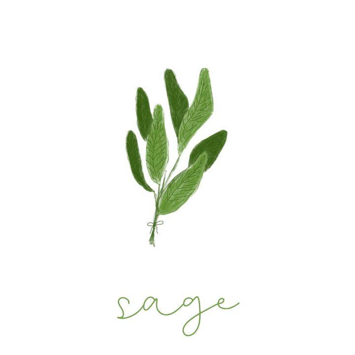 Sage - maddi made