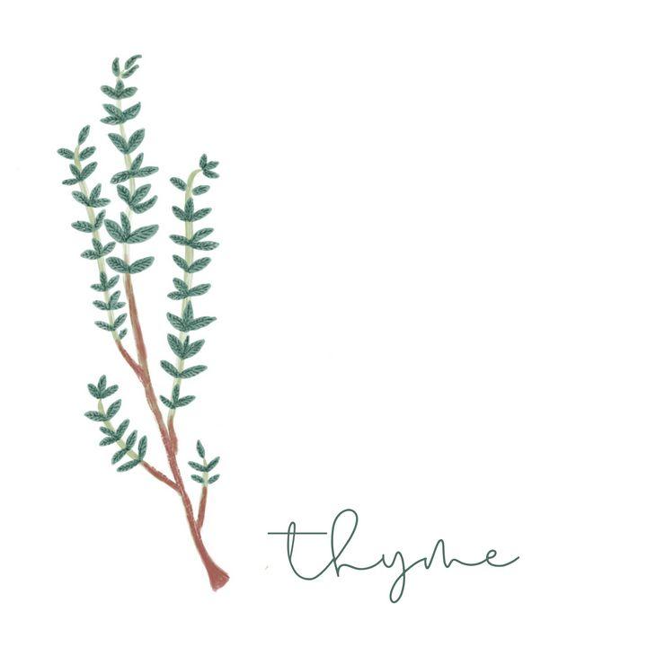 Thyme - maddi made