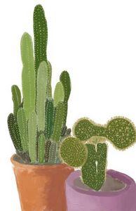 Cactus Pair