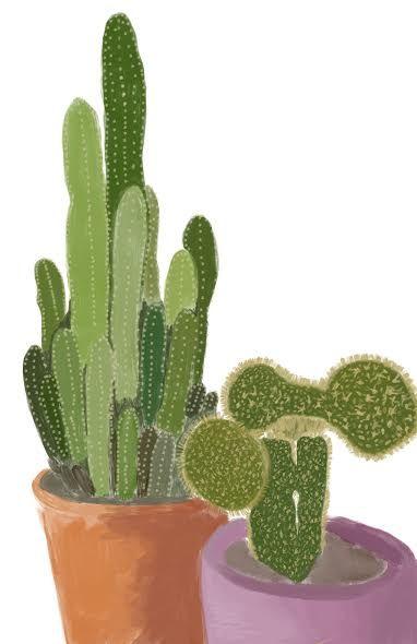 Cactus Pair - maddi made