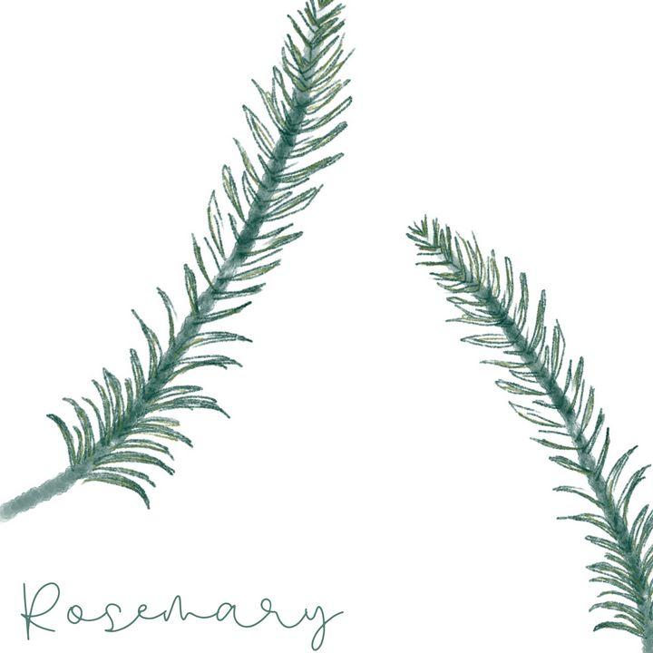 Rosemary - maddi made