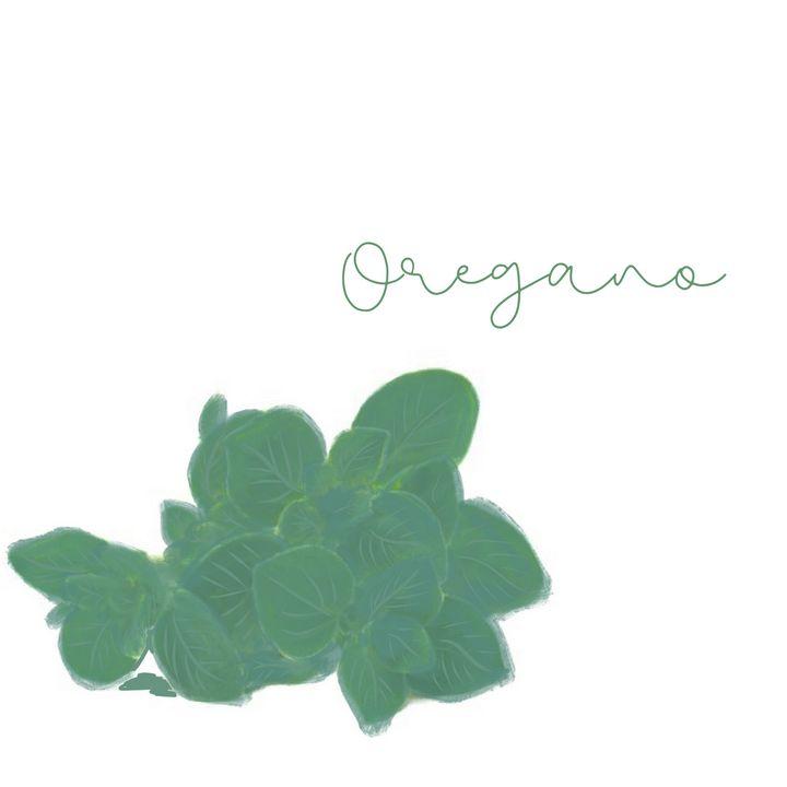 Oregano - maddi made