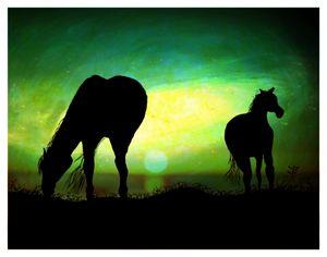 Beautiful Sunset Horses