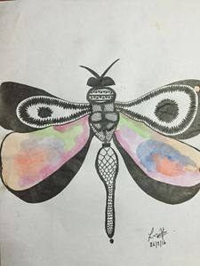 The coloured butterfly