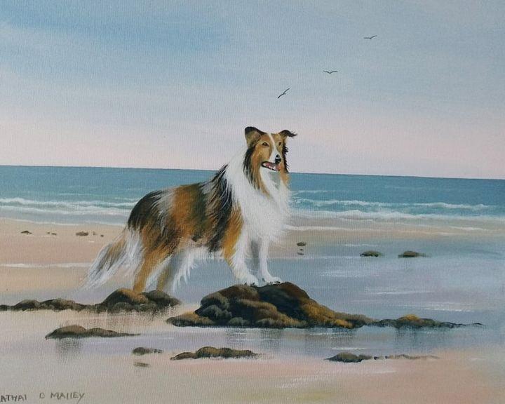 summer waves - cathal o malley