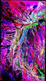 Colorful Abstract Print to any size