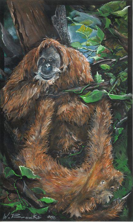Orangutans - Wendell Brooks
