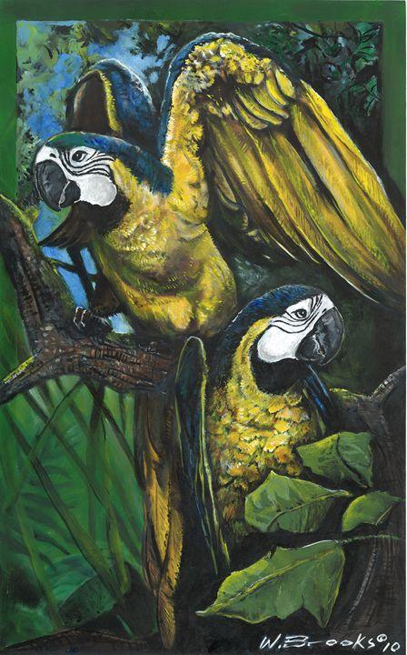 Parrots - Wendell Brooks
