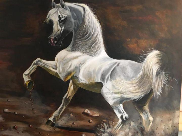 Arabian Horse - Adil Aleidi