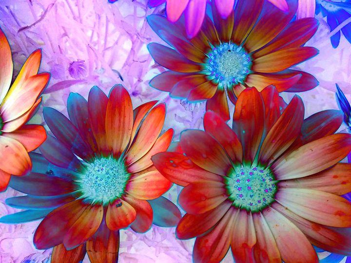 Sunflora - Elizabeth Wiegel