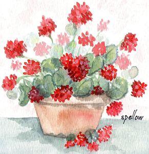Geraniums in Terra Cotta Pot - WatercolorsbySandy