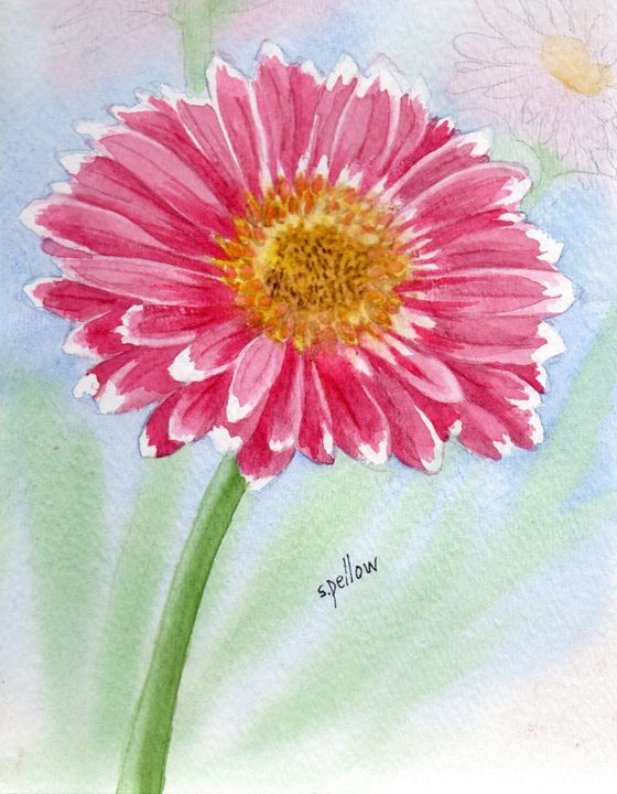 Gerber Daisy - WatercolorsbySandy