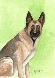 German Shepherd - WatercolorsbySandy