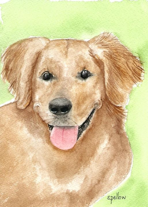 Golden Retriever - WatercolorsbySandy